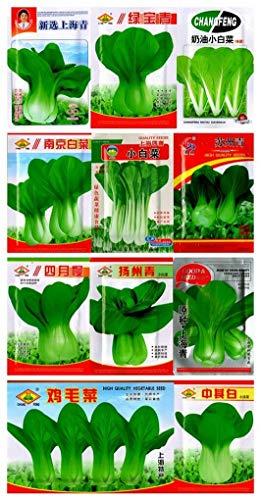 Portal Cool 5 de abril de Bok Choy # 2000 Semillas: Semillas Bok Choy Pak Choi Shanghaiqing la col de China huerta originales Shanghai col semillas de hortalizas