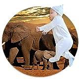 PLOKIJ Área de la alfombra de la habitación de las niñas de los niños de la alfombra de los niños de las alfombras lavables alfombra adolescente, elefante Á
