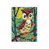 Lxmsja Kit per Ferri da Uncinetto di Tappeti Fai da Te per Adulti, Latch Hook rug Kits Tappeto da Ricamo Punto Croce Artigianato d'Arte con Motivo Stampato-Gufo 30x35 cm