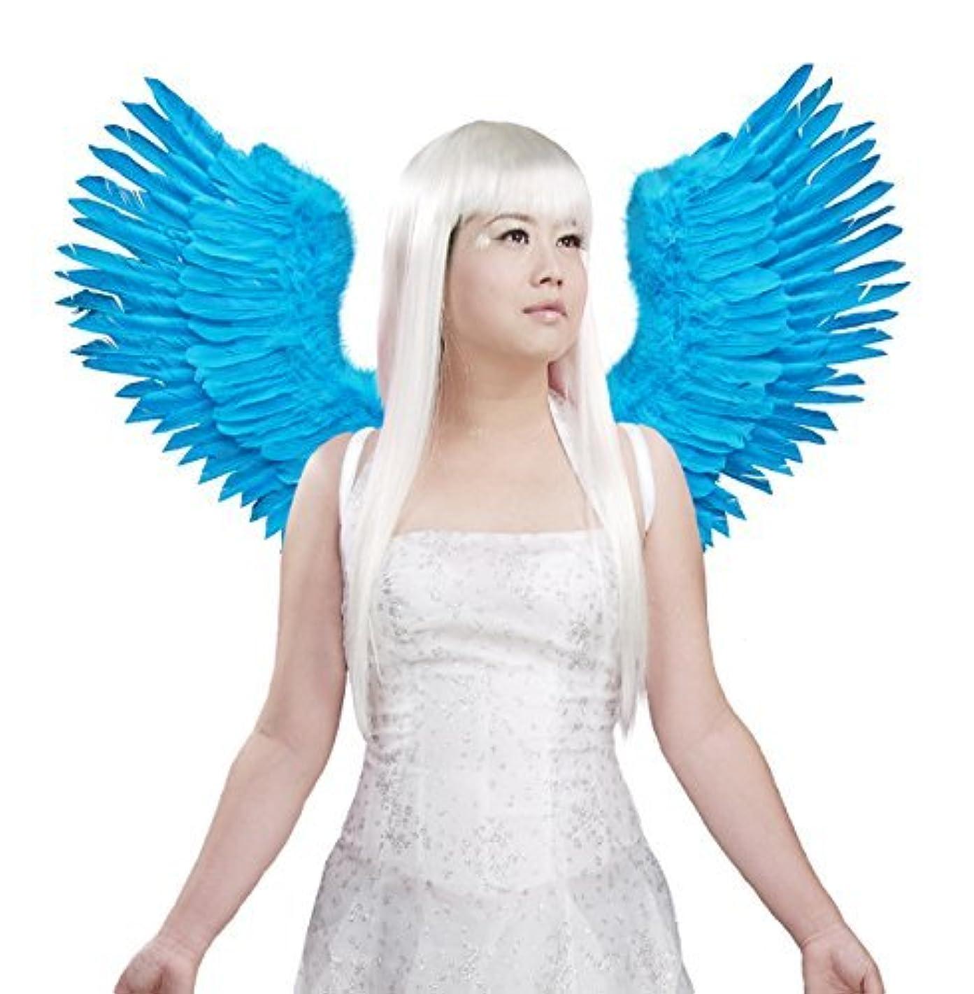 FashionWings (TM Blue Open Swing V Shape Costume Feather Angel Wings Adult Unisex