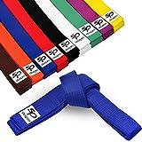 Starpro Cinturón de Ranking de Artes Marciales | Algodón de 7 Puntos | 9 Colores | Diseño Ligero para Entrenamiento y competición de Karate Judo Taekwondo | 240cm 280cm 320cm