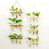 Wall Hanging Planter Terrarium with Wooden Stand, 3 Tiered Mini Test Tube Flower Vases Retro Hanging Glass Planter Propagator for Hydroponic Plants Cutting Home Office Garden Decor- 9 Test Tubes