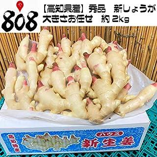 【高知県産】秀品 新生姜 大きさお任せ 約2kg