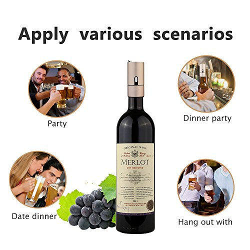 ALIBEISS Starcompass Wine Aerator Portable Wine Beer Foam Maker 2 in 1 Electric Wine Decanter Aerator Set Beer Bubbler Wine Aerator Pourer Share Delicious and Fun