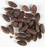 Berberitze Berberis vulgaris 140 Samen