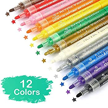 Acrylic Paint Marker Pens Set of 12 Colors for Rocks Painting Ceramic Glass Wood Fabric Canvas Mugs,Photo Album DIY Craft Scrapbooking Craft Card Making 12 Colors