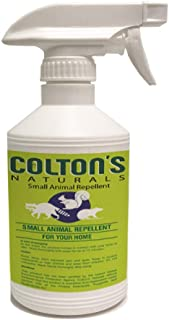 All Natural Rodent Repellent Spray- Perfect for: Racoons, Rats, Squirrels, Rabbits, Gophers and Many Small Animals. Indoor and Outdoor Deterrent- Garage, Yard, Trash cans (32)