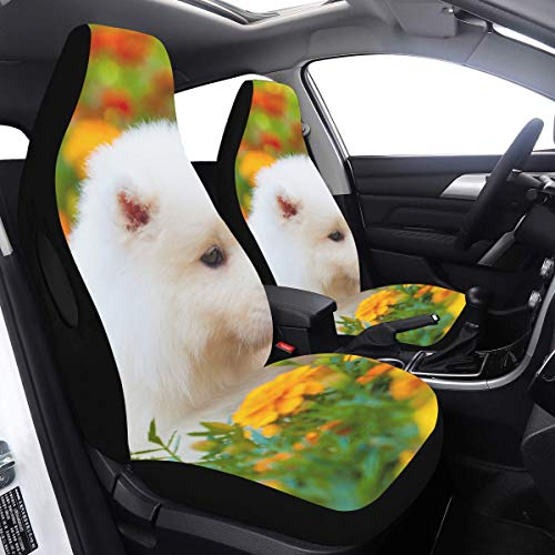 Best Buy! Seat Covers for Cars Samoyed Dog SUV Car Seat Covers 2 Pcs Universal Fit Airbag Compatible...