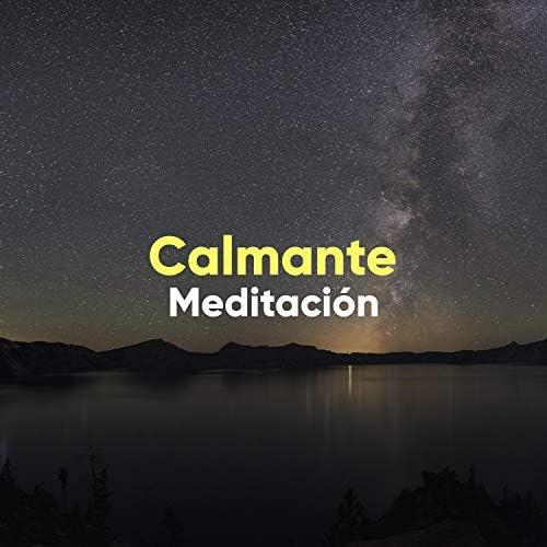 Musicoterapia Natural & Musica para Meditar