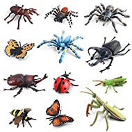Volnau Bug Toys Figurines 12PCS Insect Toys Figures for Kids Toddlers Christmas Birthday Educational Bee Beetle Mantis Spider Ladybug Butterfly Plastic Model