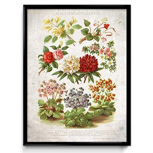 Gewächshaus Blumen Vintage Druck – VP1064UK, Baumwolle, Vintage Beige, 21 x 30 cm