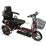 tricicli elettrici prezzi