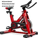 Ciclismo Indoor - Spin Bike Stazionario, Silenzioso Sistema di Trasmissione a Cinghia Silenziosa Cyclette con Volano con Frequenza Cardiaca, per Allenamento Cardio Professionale