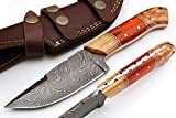Grace Knives Handmade Damascus Steel Hunting Fix Blade Knife 8.5 Inches with Leather Sheath G-1085 (Wood and Sheet)