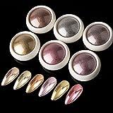 BISHENGYF Chrome Nail Powder 6 Jars Rose Gold Mirror Effect Manicure Pigment Glitter Dust for Salon Home DIY Nail Art Deco with 6 Eyeshadow Sticks