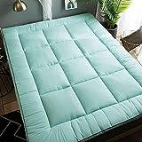 jhgsdh Alfombrilla de Tatami, colchón Grueso, colchón de futón Plegable, colchón de Camping portátil, Acolchado para Dormitorio de Estudiantes, Verde 120x200cm (47x79 Pulgadas)