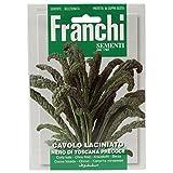Seeds of Italy Ltd  - Semillas (col rizada)
