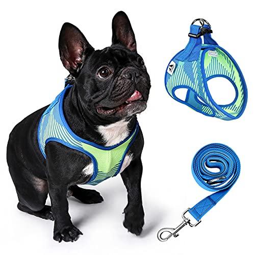 Petbank Arnés para perro mediano sin tirar, arnés ajustable para perro con poliéster duradero y nailon para entrenamiento al aire libre o caminar, M, azul y verde