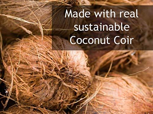 Plantonix Coco Bliss Premium Coconut Coir Pith