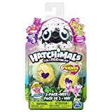 Hatchimals CollEGGtibles 2 Pack + Nest - Season 3 Niño/niña - Kits de figuras de juguete para niños (5 año(s), Niño/niña, Multicolor, 127 mm, 50,8 mm, 152,4 mm) , color/modelo surtido