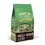 Lily's Kitchen Alimento per cani secco completo di agnello adulto (2,5 kg)