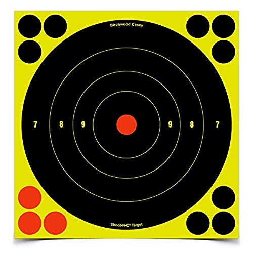 BIRCHWOOD CASEY Shoot-N-C 8' Bull's-Eye...