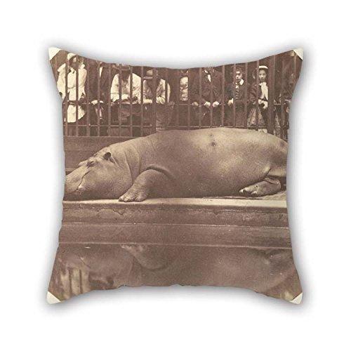 N\A Pintura al óleo Conde De Montizon (español - El hipopótamo en los Jardines zoológicos, Fundas de Almohadas de Regent