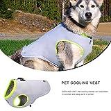 ペット冷却 ベスト 犬猫 用冷感服コート 犬のクールベスト ドッグウェア クール大中型犬用夏服 お散歩 お出かけ 熱中症対策 大型中型犬用