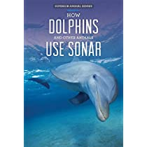 How Dolphins and Other Animals Use Sonar (Superior Animal Senses)