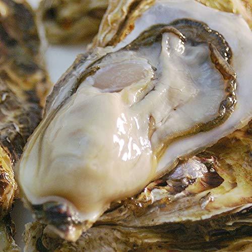 北海道知内産 殻付牡蠣 L30個(生食用。牡蠣ナイフ付・冷蔵便で産地直送)