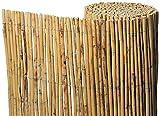 Bonerva Cerramiento para terrazas de bambú caña Completa | Cerramiento de jardín | Cañizo Natural Tipo bambú (1,5 x 5 m)
