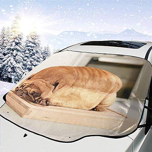 Hiram Cotton Car Sunshade Mops-Brot-Windschutzscheiben-Sonnenschutz Für Auto-Faltbare Uvstrahl-Reflektor-Selbstfrontscheibe-Sonnenschutz-Visier-Schild-Abdeckung Hält Fahrzeug Kühl