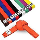 Starpro Cinturón de Ranking de Artes Marciales   Algodón de 7 Puntos   9 Colores   Diseño Ligero para Entrenamiento y competición de Karate Judo Taekwondo   240cm 280cm 320cm