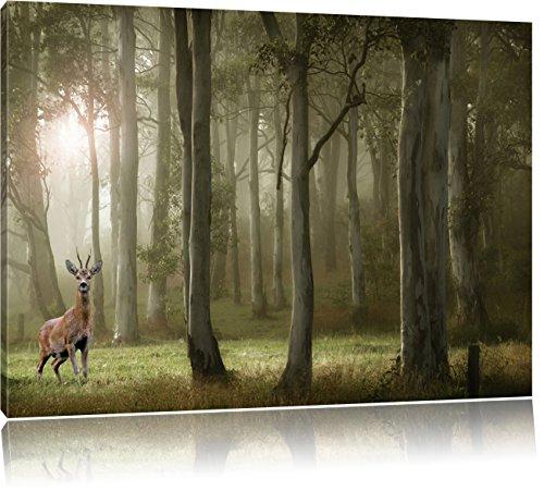 Pixxprint Hirsch im Wald als Leinwandbild | Größe: 100x70 cm | Wandbild | Kunstdruck | fertig bespannt