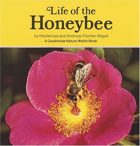Life of the Honeybee (Carolrhoda Nature Watch Book)
