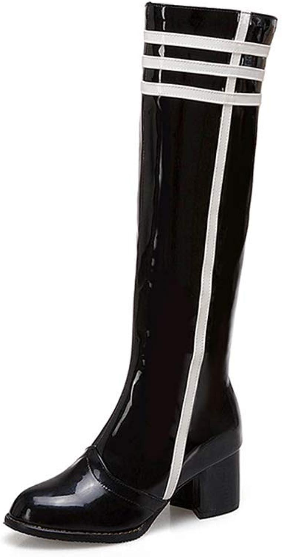 Webb Perkin Women Straight High Heel Female Waterproof shoes Short Plush Warm Zipper Boots Lady Knee-high Boots