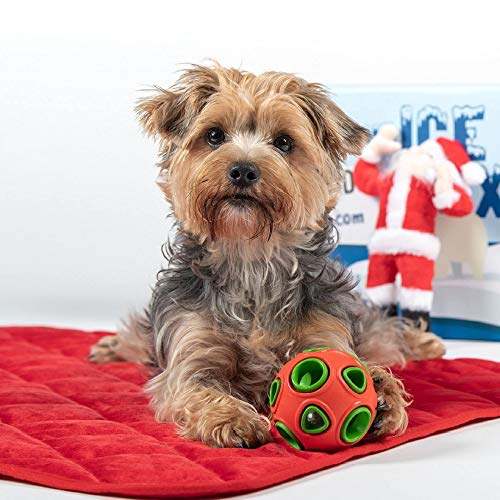 BoxDog - Monthly Dog Subscription Box with 100% Handmade Treats & 2 Dog Toys: Small Dog