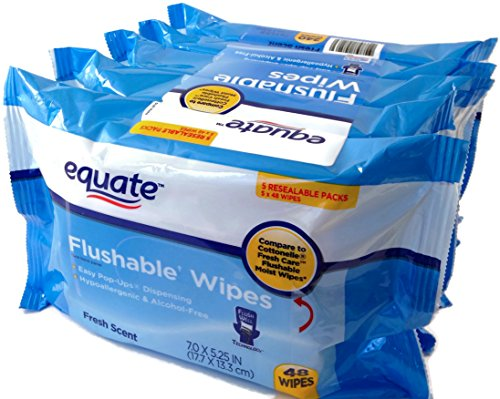 Equate Flushable Wipes 5-Pack of 48 Ea. (240ct)