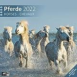 Pferde 2022, Wandkalender / Broschürenkalender im Hochformat (aufgeklappt 30x60 cm) - Geschenk-Kalender mit Monatskalendarium zum Eintragen