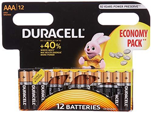 Duracell AAA-batterij (12 stuks).