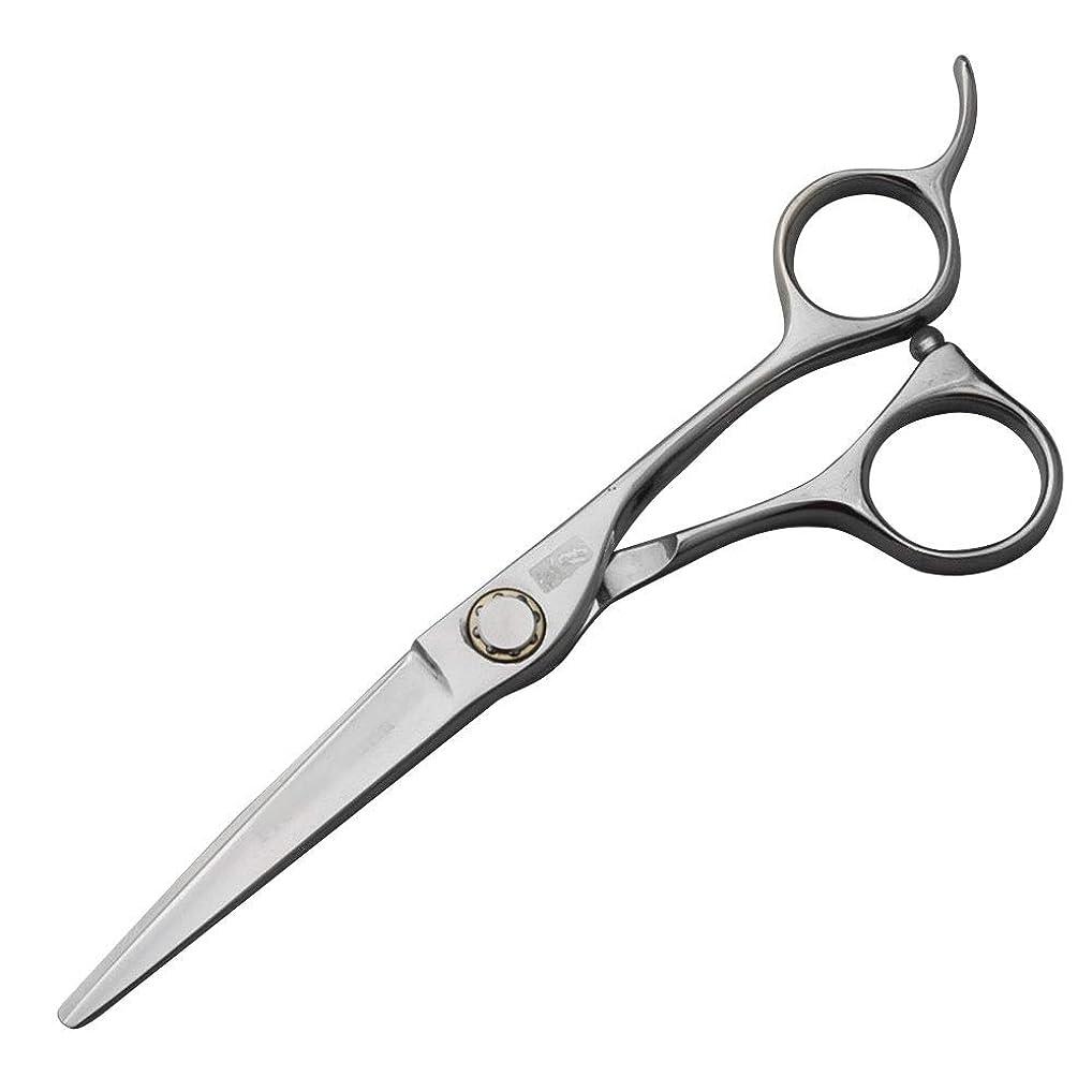 モザイクピラミッドパプアニューギニア440C高級ステンレス鋼理髪はさみ、スタイリスト特別な平らなはさみ+歯はさみセット モデリングツール (色 : Silver)