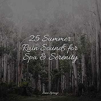 25 Summer Rain Sounds for Spa & Serenity