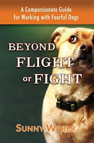 Best Online Flight Training