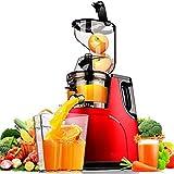LYYN Grande Scivolo a Bocca Larga Intera Mela Spremiagrumi Lento Frutta Verdura nutrizione Estrattore di Succo Multifunzionale Spremiagrumi