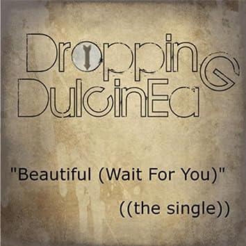 Beautiful (Wait for You)