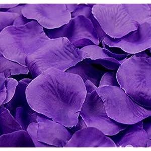 Liroyal Big Value Rose Petals, 1000-Piece, Purple