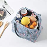 Reusable Lunch Bags, Gotop Cooler Tote Bag Insulated Lunch Box, Water-resistant Thermal Lunch Bag Soft Liner Lunch bags for Women Picnic/Boating/Beach/Fishing/Work