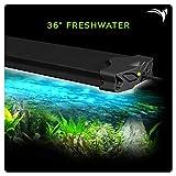 Aquatic Life Edge WiFi LED Aquarium Light, 36-Inch Freshwater