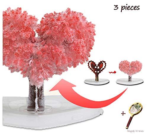 AUKBEC Kristallmagie Growing Up Herz Sakura Einpflanzen Geschenkpapier Baum Blühender Spielzeug Kreative DIY Science Experiment Europa Safety Standard mit Forschung Lupe