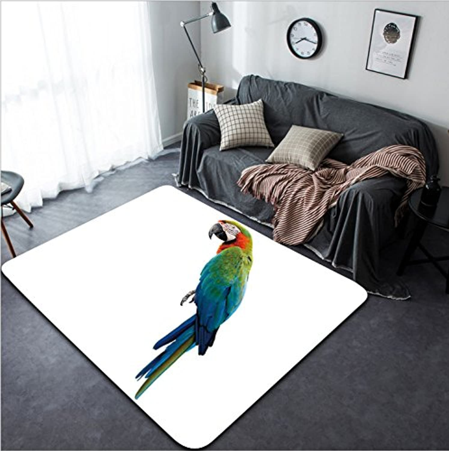 Vanfan Design Home Decorative 656374822 Harlequin beautiful bluee green red parred hybrid cross of bluee-and-gold and Green Wing Macaw birds isolated on white background Modern Non-Slip Doormats Carpet